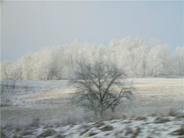 Встреча Нового года 2009 -Польша-ПРАГА-Карловы Вары-Дрезден 54ed7d497732