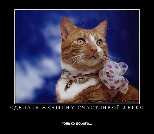 Забавные животные 77ca720ba58e
