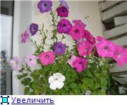 Рыськино СЧАСТЬЕ E8899b776961t
