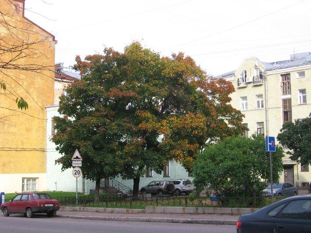 Фото конкурс: Осень в моем городе  2e0e0402a352