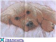 Мои успехи... Галина Ce1238e691d2t