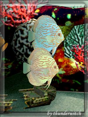 Все для аквариумов, водоемов - Страница 2 9d2833a5ffac