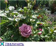 Изучаем основы Фотошопа - Страница 3 64aae919c81dt
