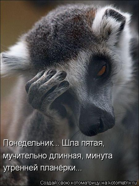 Смешные картинки 07b5751970a3