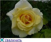 Specially for Karkela )))    Тестирование сербок и проч. 382d11ba6f81t