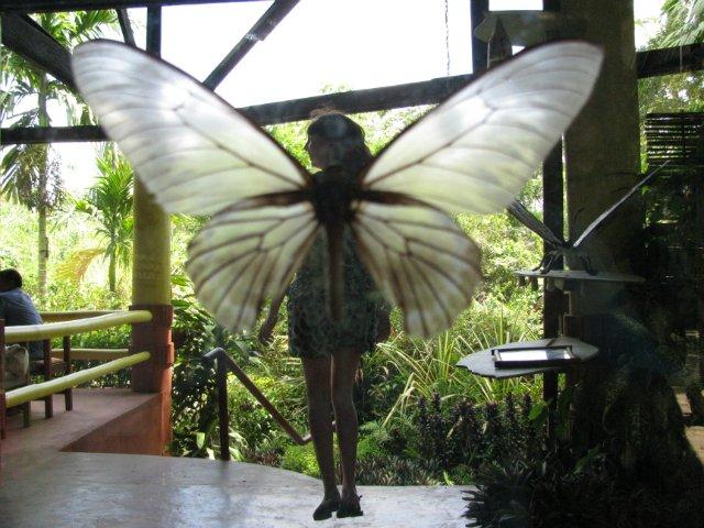 Из зимы в лето. Филиппины 2011 - Страница 2 E9b422515b58