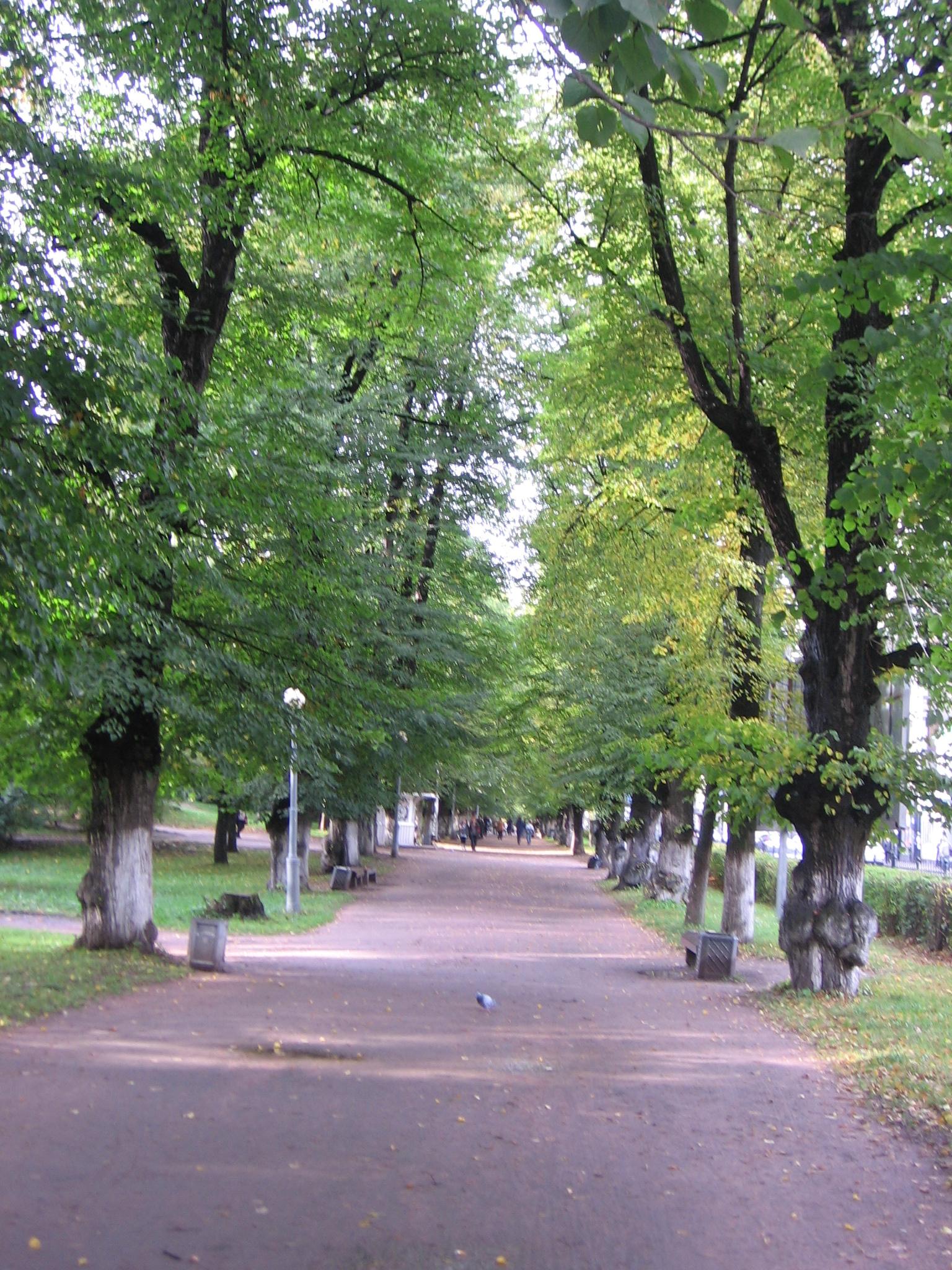 Фото конкурс: Осень в моем городе  644ee496b760
