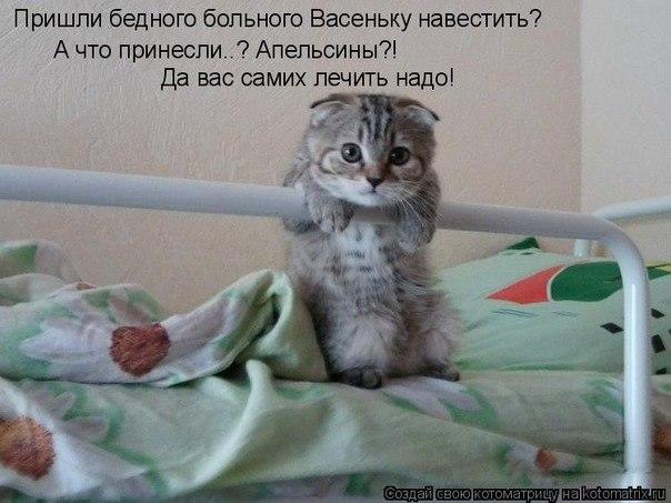 братья и сестры наши меньшие)) A1609ad6c1cb