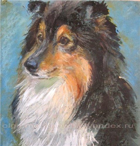 Рисую собак по фото - Страница 6 801e514d82d7