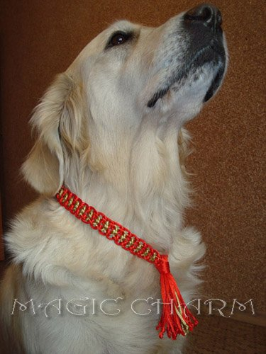 MAGIC CHARM - обереги, ошейники, украшения, ринговки и другие аксессуары для  собак и кошек. 72fcb49343e6