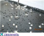 Польский город Миколайки - место отдыха калининградцев C2b982f7c793t
