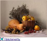 Наши домашние растения - Страница 2 545cae983232t
