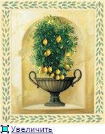 Цветы, букеты - Страница 2 397929e53073t