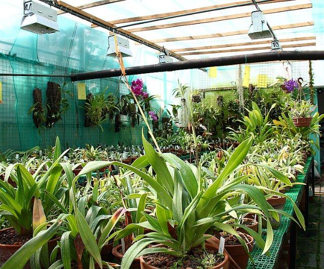 Экскурсия по Ботаническому Саду 74cbef6d16bf
