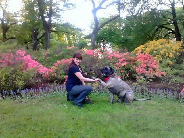 Наши собаки, друзья и гости, кот Мензурка - Страница 31 E82be5057b45