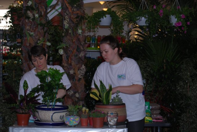 Международая выставка «Цветы.Ландшафт .Усадьба 2010» Астана - Страница 4 6c6328e51985
