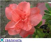 Красота без границ - Страница 2 592afaf49d5dt