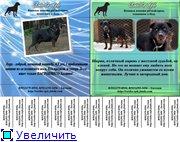 Социальная реклама 9097644a2eb5t