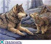 Планируем совместный отшив волков!!! - Страница 2 0e1eec4d3249t