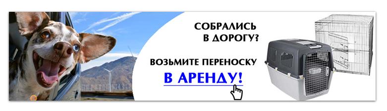 Интернет-магазин зоотоваров Счастливый Питомец 10ab1de52ca2