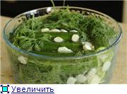 Домашнее консервирование (соления) 6a07a5d20e33t