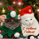 Аватарки на Новый Год! 5caaa8e15a4a
