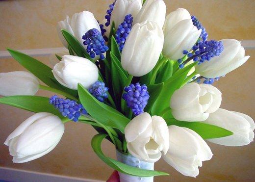 Поздравляем Санечку(Ветерок_) с днем рождения!!!!! D693fab3d33a