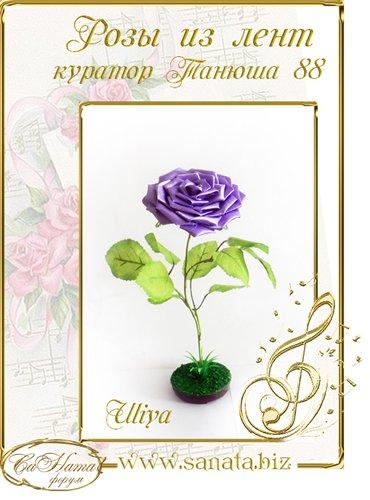 Награды Uliya 197a67dede9bt