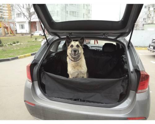 """Интернет магазин товаров для собак """"Волча"""" D67fef029f60d25f26922951ac2b6a4c"""
