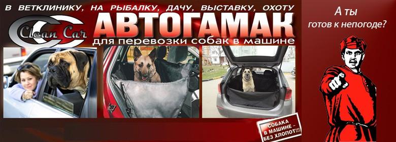 """Интернет магазин товаров для собак """"Волча"""" Ebc51f2b6d59e6c80e0733509a259cb3"""