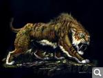 Саблезубые тигры 01094e0767d625a427327630a5834ba1