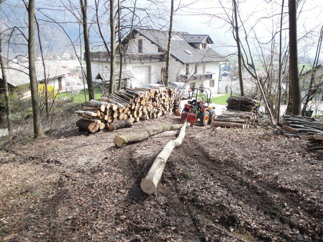 Izrada ogrijevnog drva - Page 2 21596184