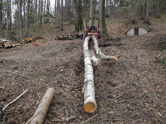 Izrada ogrijevnog drva - Page 2 21599342