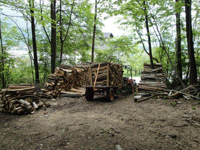 Izrada ogrijevnog drva - Page 2 21760775