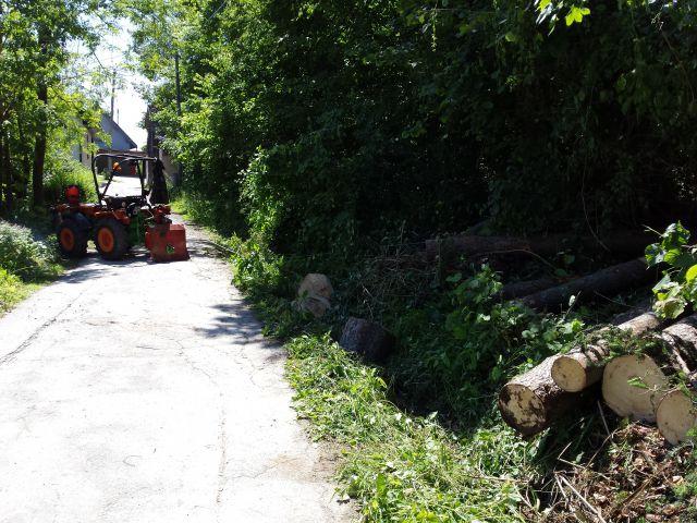 Izrada ogrijevnog drva - Page 2 21760826