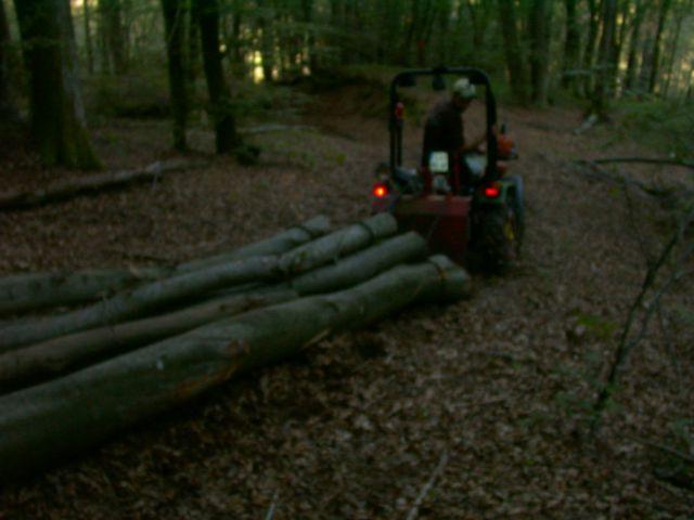 Izrada ogrijevnog drva - Page 4 21765188