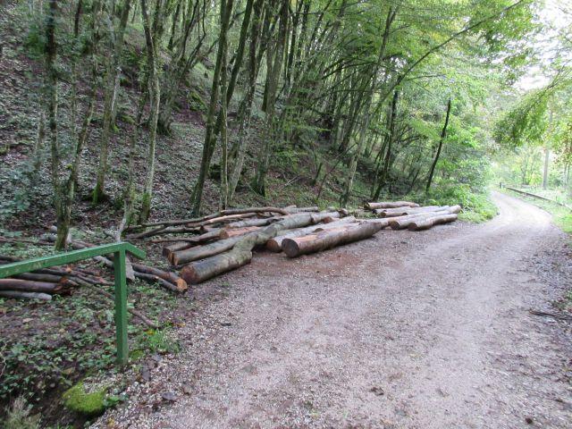 Izrada ogrijevnog drva - Page 4 21979348