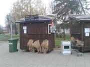 Mali sajam & izložba životinja 20151215_144432