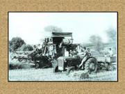 Agrar & selo u sjeni prošlosti - Page 2 Z25
