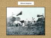 Agrar & selo u sjeni prošlosti - Page 2 Z12