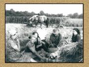 Agrar & selo u sjeni prošlosti - Page 2 Image