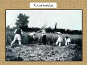 Agrar & selo u sjeni prošlosti - Page 2 Zetva2