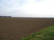 Sjetva pšenice DSC00695