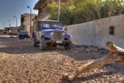 Sinai... in salsa Jeep MG_7236