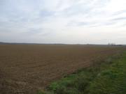 Sjetva pšenice DSC00699