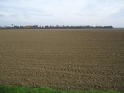 Sjetva pšenice DSC00694