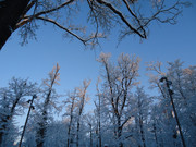 Putujem fotografiram & snimam DSC01406