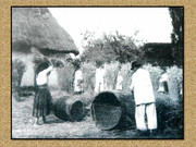 Agrar & selo u sjeni prošlosti - Page 2 Z15