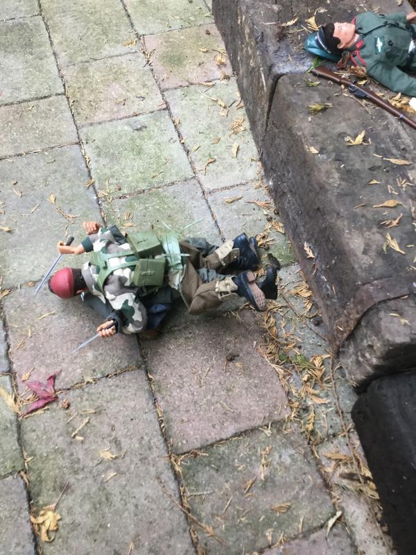 Fix bayonets  IMG_6643
