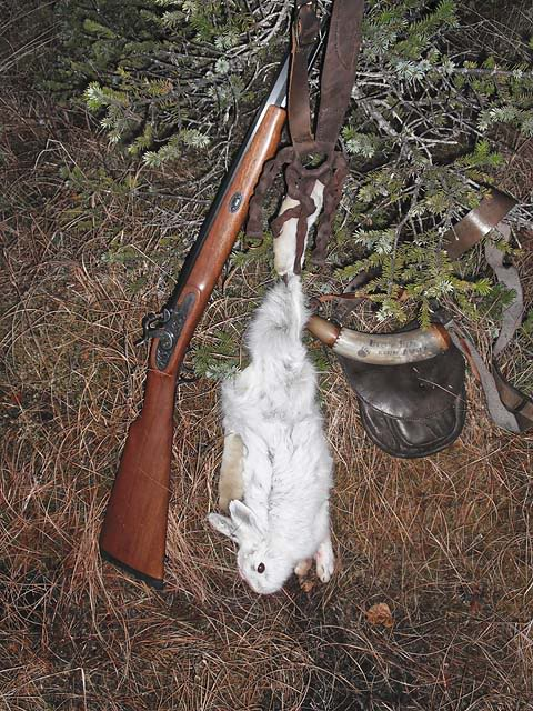 Game taken with Primitive Firearms - MUZZLE-LOADERS Rabbitone30